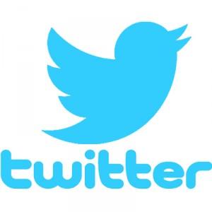 Come pubblicare immagine GIF su Twitter