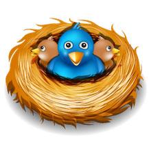 Archiviazione dei Tweets