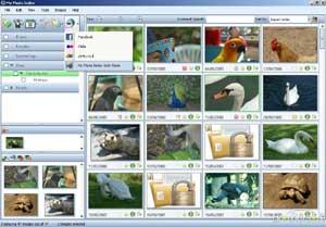 Foto per siti e spazi web in un click!
