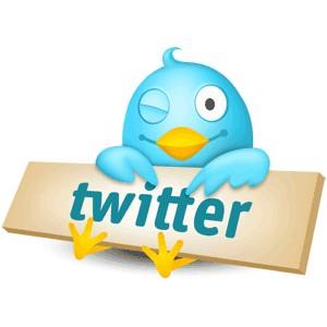 Twitter Bottone